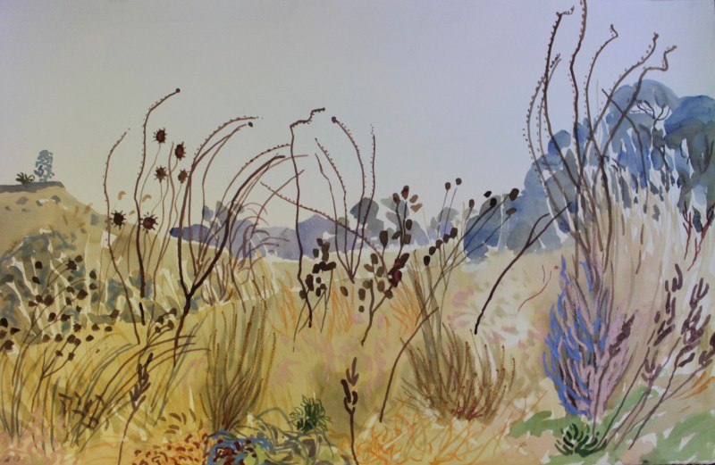 Wild Grasses 2018 by Mark Dober