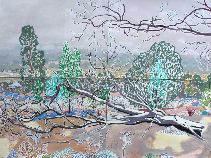 Bushfire smoke, Nuggetty Hills 2020 by Mark Dober